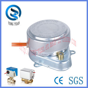 High Quality Hysteresis Synchronous Motor for Motorized Valve Actuators (SM-20-W) pictures & photos