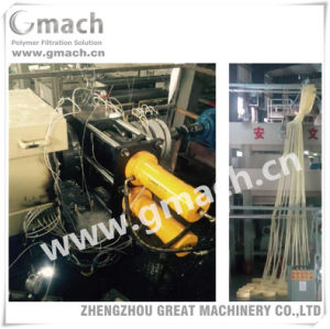Plastic Extrusion Hydraulic Double Pillar/Column Continuous Screen Changer Melt Filter pictures & photos