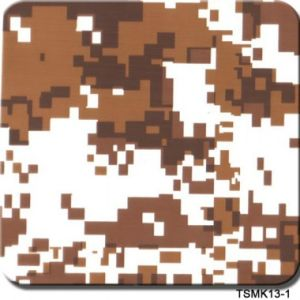 Ts 0.5 Meter Camouflage Street Water Transfer Printing Film Hydrographic Dipping Films pictures & photos
