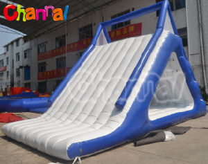 Hot Sale Giant Water Park Inflatable Water Slide pictures & photos
