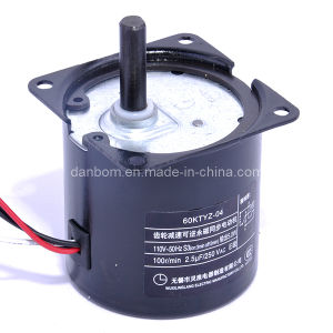 Single Phase Synchronous Gear Motor (TYZ Series) pictures & photos