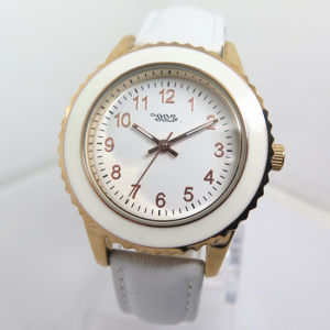 Women′s New Style Alloy Watch Fashion Watch Cheap Hot Watch (HL-CD039) pictures & photos