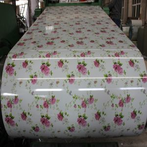 SGCC Decorated GB Painted Galvanized Steel Coil for Construction pictures & photos