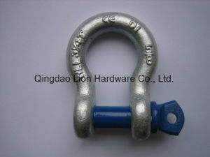 Us Hot Dipped Galvanized Bolt Type Forged D Shackle G2150 pictures & photos