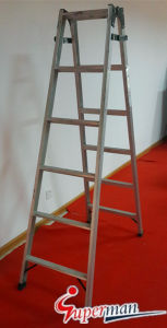 Ladder for Bulding with CE (SM-1505; SM-1526) pictures & photos