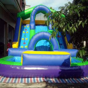 Inflatable Water Slide (CYSL-596) pictures & photos