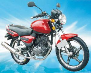 Dirt Bike (JH125-10D-R)