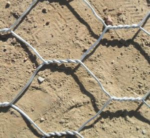 1-1/2′′hot-Dipped Galvanized Twisted Hexagonal Wire Net pictures & photos