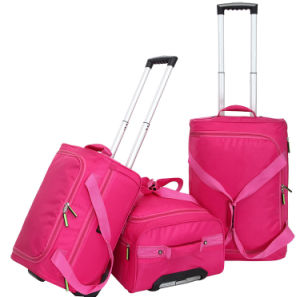 Luggage Trolley Travel Bag for Outdoor, Travelling, Laptop pictures & photos