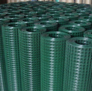 PVC Coated /Galvanized Welded Wire Mesh (HP-002) pictures & photos