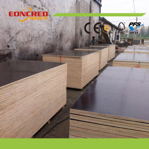 Factory Wholsale Film Faced Plywood pictures & photos