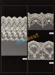 Different Designs High Quality Beautiful Mesh Lace for Skirt pictures & photos