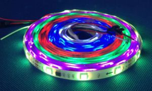 LED Strip Light DC12V IP65 Support Programming pictures & photos