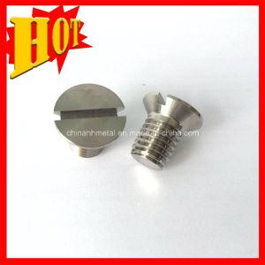 DIN84 Slotted Cheese Head Titanium Screws pictures & photos