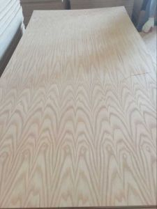 American Red Oak (0.5mm) Veneer Fancy Plywood Board Sales in Mexico pictures & photos