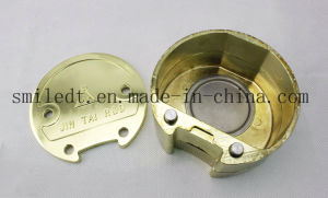 a Plate of Copper Alloy (SJT48) pictures & photos