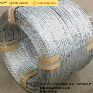 Galvanized Iron Wire with High Good Quality pictures & photos