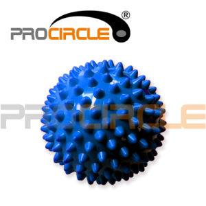 Hard PVC Massage Ball, Excellent Massage Ball, Mini Massage Balls (PC-MS2011-2018) pictures & photos