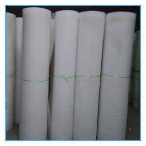 Poultry Net / Plastic Netting with High Quality (XB-PLASTIC-0017) pictures & photos