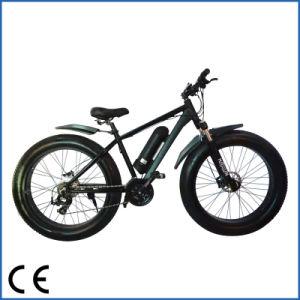 New Product Cheap Electric Mountain Bike Electric Fat Bike (OKM-679)