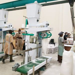 Grade 1 Sifted Maize Meal Machine for Kenya Zambia South Africa pictures & photos