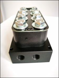 Air Suspension System Air Suspension Repair Kit Valve for Vehicle pictures & photos