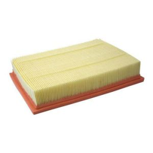 Car Air Filter for Land Rover Discovery III 04-09 Phe000112 pictures & photos