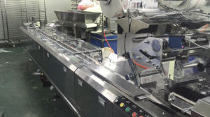 F-Xpl600 High Speed Multi-Functional Pillow Packing Machine pictures & photos