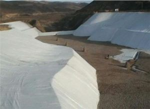 Compound Geomembrane Composite Geomembrane for Foundations pictures & photos