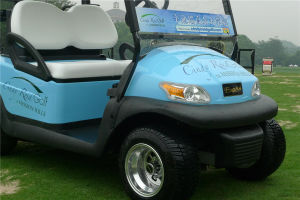 Aluminium Chassis 2 Seater Electric Golf Cart for Golf Course pictures & photos