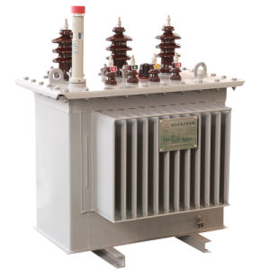 6-35kv Oil Immersed Power Transformer pictures & photos