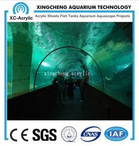 Acrylic Material Curved Acrylic Sheet Aquarium Project pictures & photos