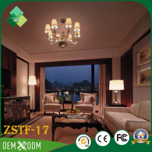 Chinese Classical Style High-End Custom Fancy Bedroom Furniture Sets (ZSTF-17) pictures & photos