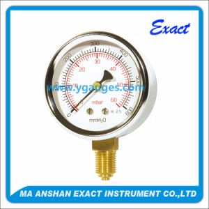 Capsule Pressure Gauge ø 63/80/100 mm Bottom Entry pictures & photos