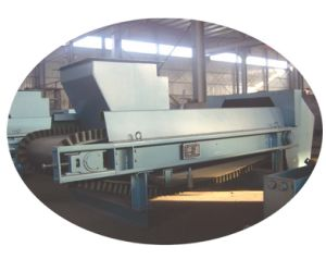 Supply Weighing Scale/Feeder for Mine Industry pictures & photos