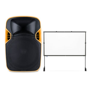 Colorful Audio Party Live Karaoke Bass Trolley LED Projection Speaker pictures & photos