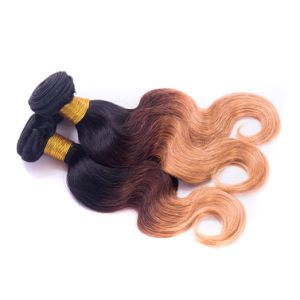 1b/4/27# Indian Virgin Pre Bonded Ombre Hair Extensions pictures & photos