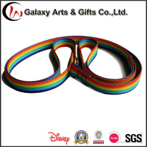Thermal Transfer Rainbow Durable Fabric Plain Nylon Adjustable Dog Collar and Leash pictures & photos