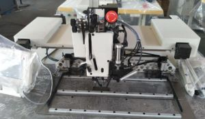 Heavy Duty Programmable Pattern Sewing Machine for Webbing Straps pictures & photos