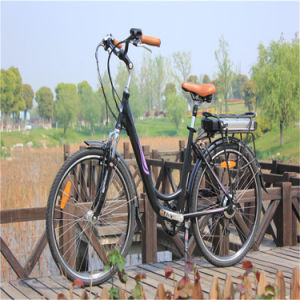Road Electric Bicycle with LED Display (RSEB-203) pictures & photos