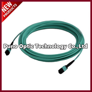 40G MTP-MTP OM3 PVC Shealth 12 Fiber Optic Cable pictures & photos