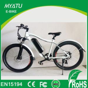 China 350w 48v Electric Mountain Bike Off Road Dirt Bike China