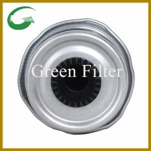 Britpart Fuel Filter for Auto Part (Wji500040) pictures & photos