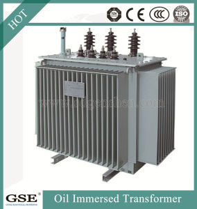 Power Transformer/Oil Immersed Power Distribution Transformer/800kVA Transformer pictures & photos