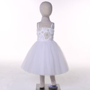 Customize Color Designer Flower Girl Dress for Wedding and Ceremonial pictures & photos