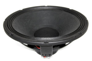 18inch PA Speaker with 110 Neo Magnet pictures & photos