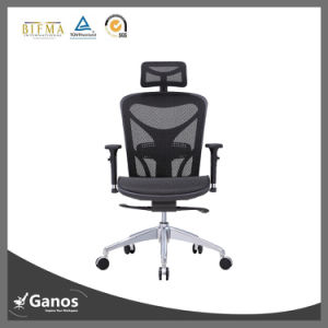 True Designs Racing Office Chair for Wamen People pictures & photos