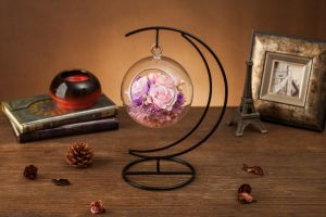Ivenran Preserved Fresh Flower for Gift and Decoration pictures & photos
