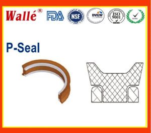 James Walker P Seals for Oil and Gas Indrustry pictures & photos