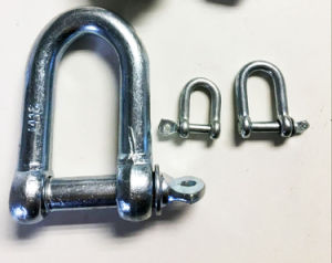 Forged Steel Dee Shackles pictures & photos